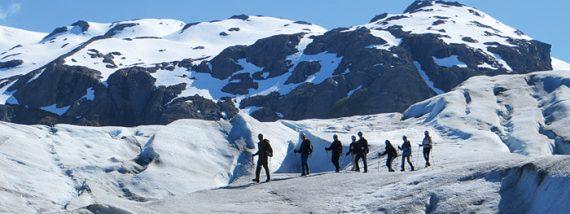 Alaska: Zu Besuch im Bärenland