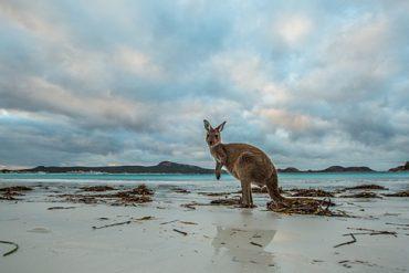 Westaustralien Lucky Bay