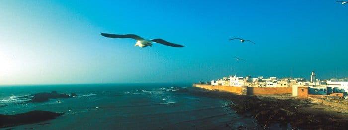 """Essaouira oder """"die weiße Stadt am Atlantik"""""""