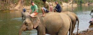 Elefantenführer in Laos