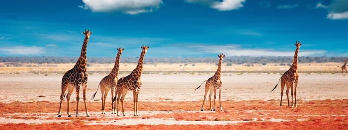 Namibia: Swakopmund im Wandel