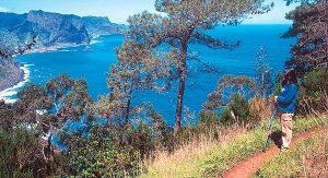 Die portugiesische Insel Madeira verzaubert Urlauber mit ihrer herrlichen Naturlandschaft