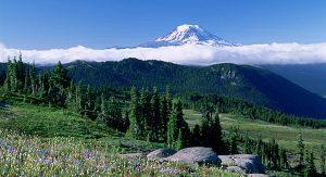 Mt. Rainier: Der höchste Gipfel des Staates Washington(Bildcopyright: John Marshall)