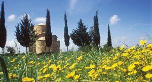 """Byzantinische Kirchen finden sich überall im """"Land der roten Erde"""": Hier die Chordakiotissa Kirche in Sotira"""