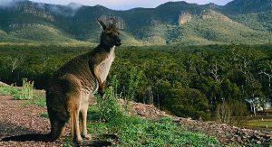 Australien Melbourne