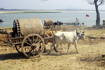 Myanmar - Strandrundfahrt per Ochsenkarren