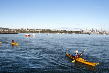 Kajak-Tour Auckland