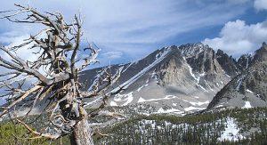 Spektakulär: Die wilde Landschaft des Great Basin Nationalparks in Nevada