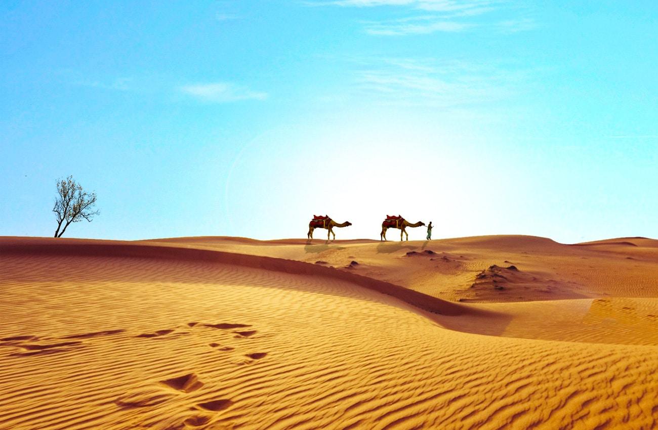 In Ägypten gibt es viel zu erleben & entdecken: Ob Wüste, Rotes Meer oder der Nil.