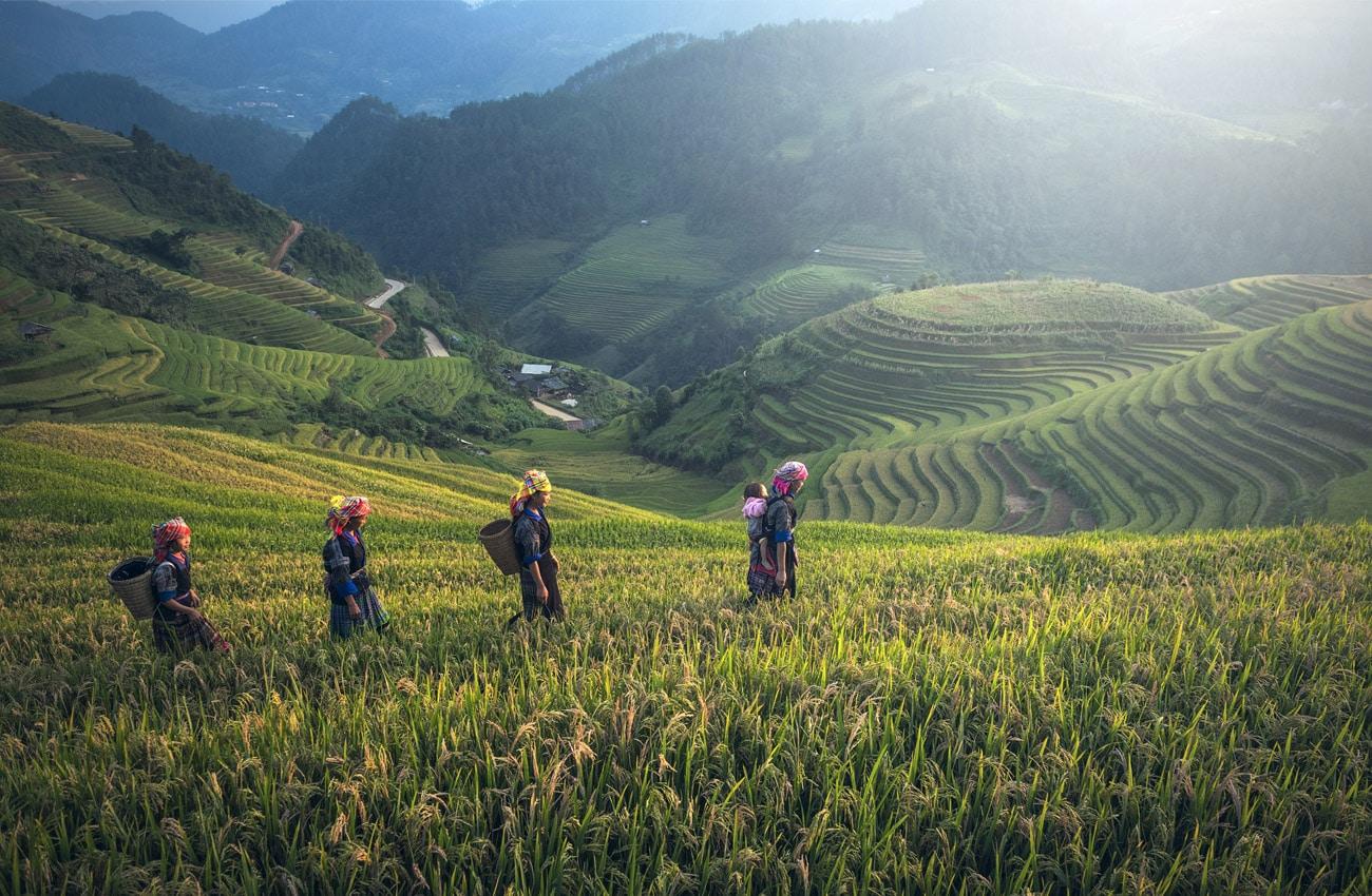 Bali hat viel zu bieten: bergige Landschaften Strände und Wasserfälle gehören dazu