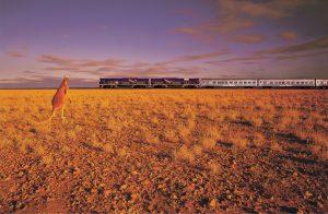 Der Indian Pacific braucht für die 4352 Kilometer lange Strecke - einmal quer durch Australien - rund 65 Stunden.