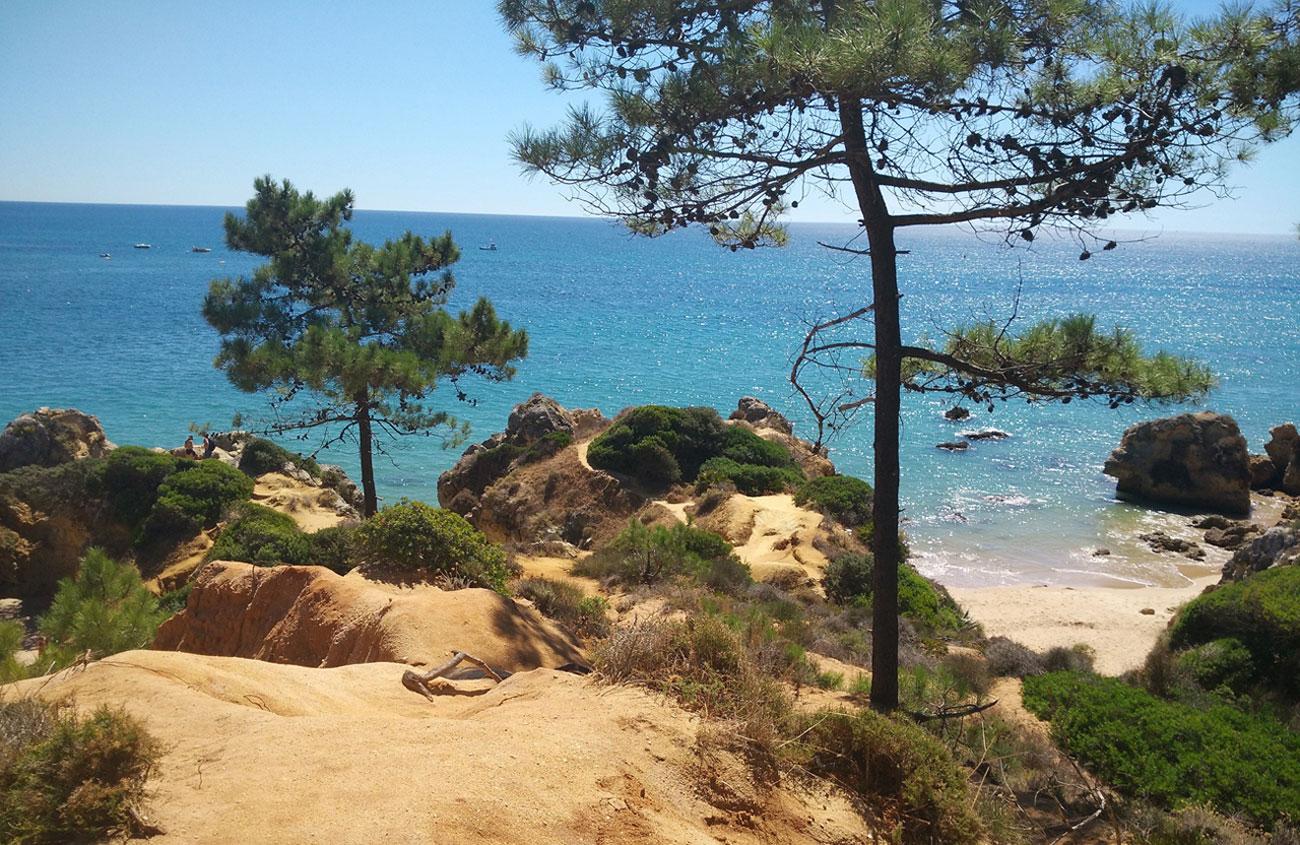 An der Algarve lässt sich noch eine ursprüngliche Natur genießen