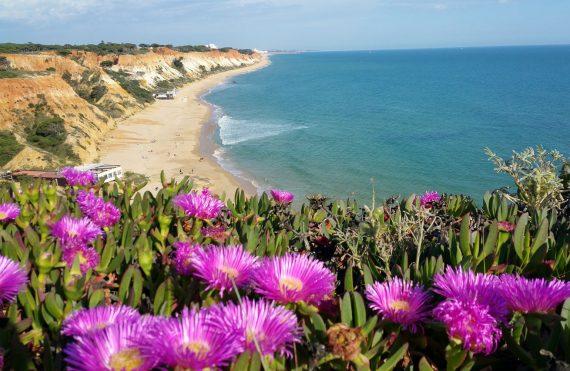 Die Algarve ist eine tolle Möglichkeit, dem ungemütlichen deutschen Winter zu entfliehen.