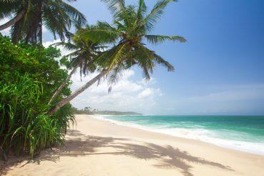 """Die Smiling Coast, die """"lachende Küste"""" in Gambia findet immer mehr Entdecker"""