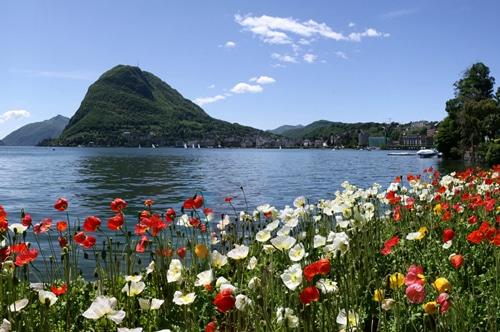 Tessin: Parco Ciani am Lago di Lugano