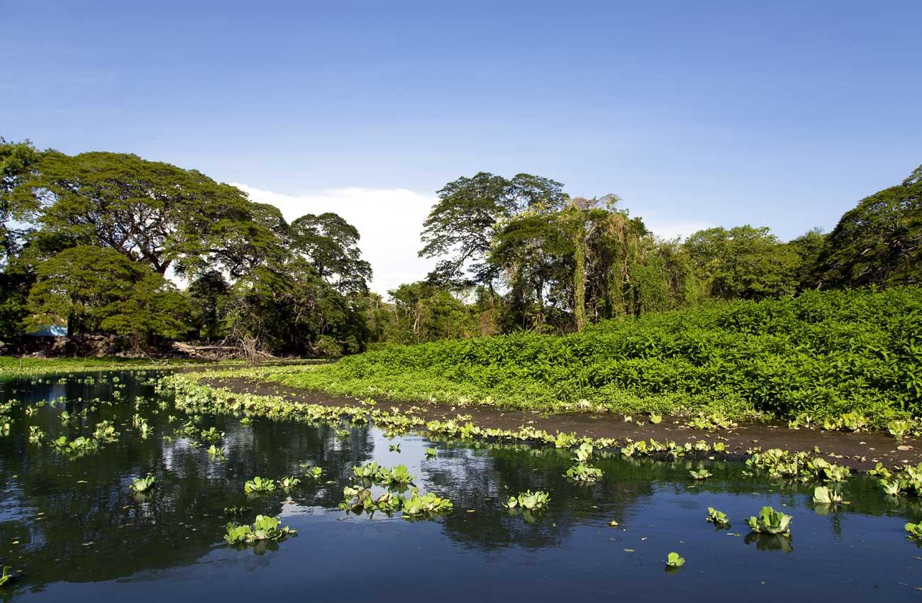 See in Nicaragua