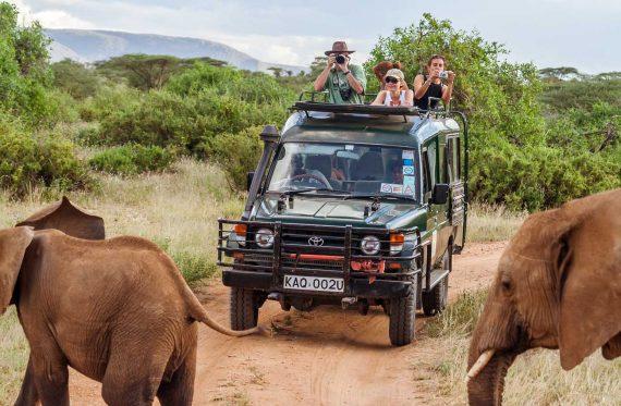 Safari in Afrika