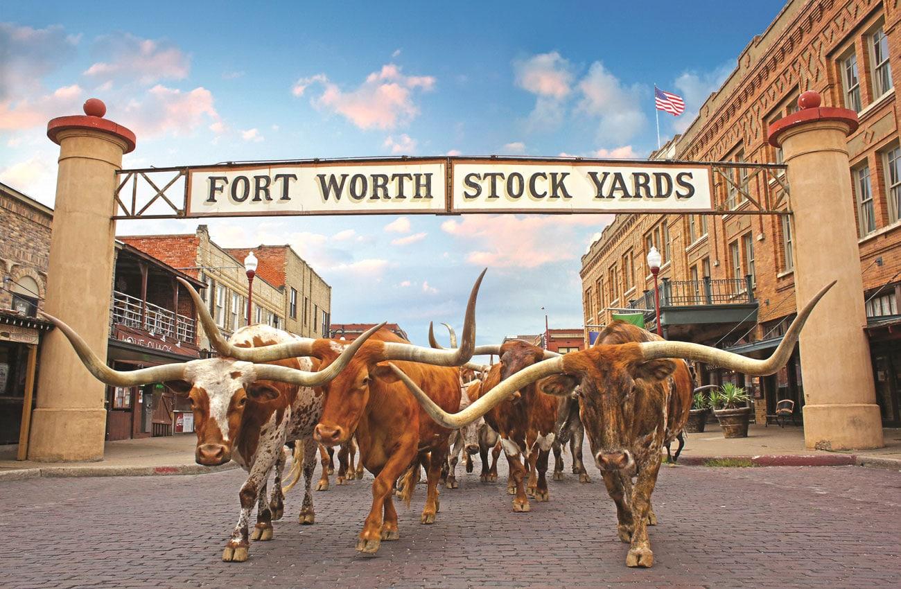 Texas - Verrückte Attraktionen